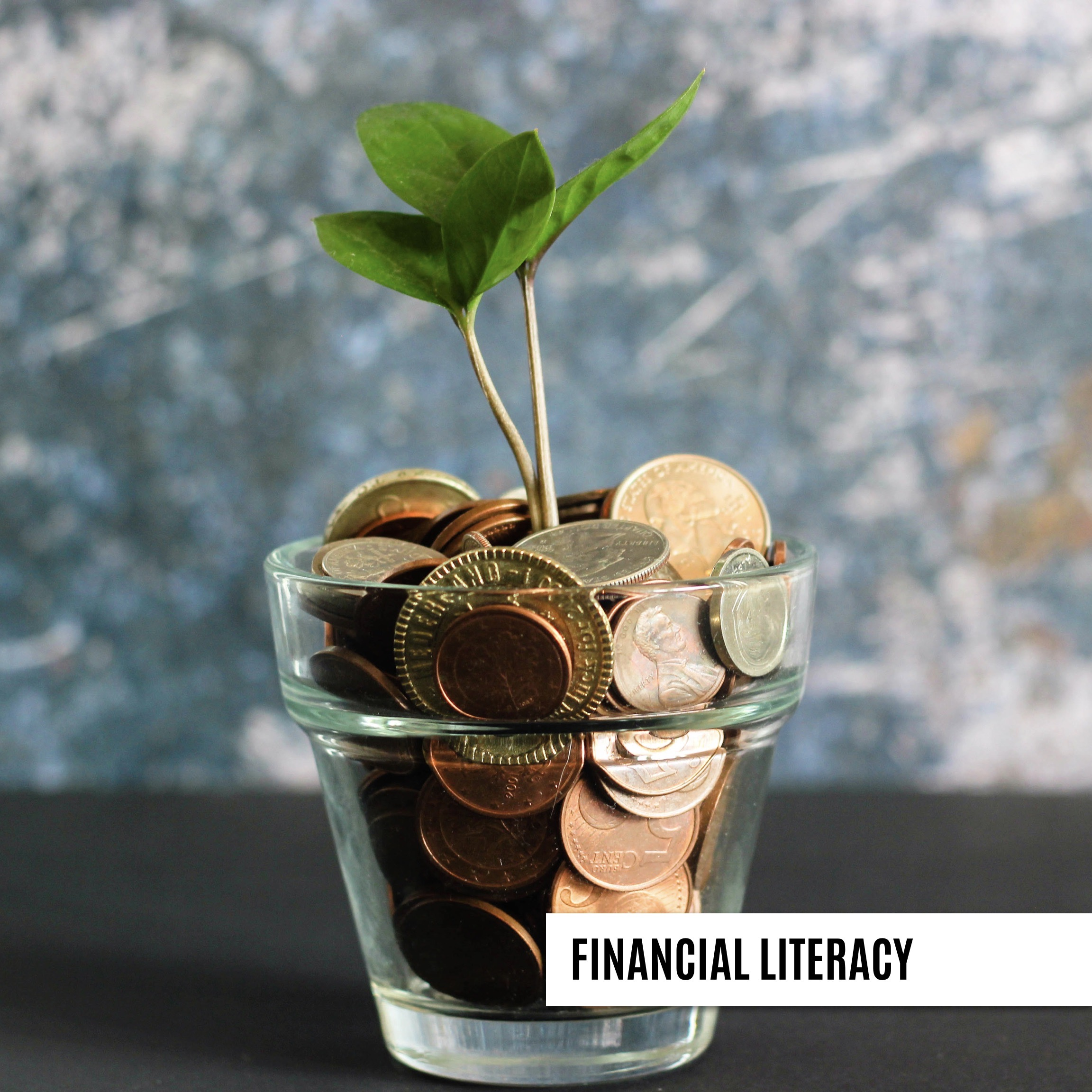 Consumer Education Workshops Available to Financial Services Industry